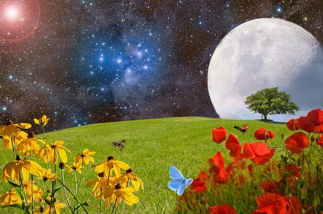 Az álmok üzenete 43. Gombostű, Göncölszekér, Gumibot Minden Nap Alap