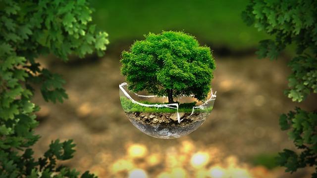 Élet a Földön: Csokor az élet dolgairól I